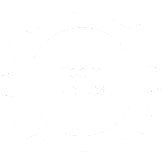 team values icon